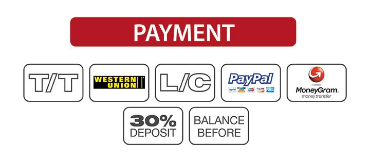 payment-viettimecraft