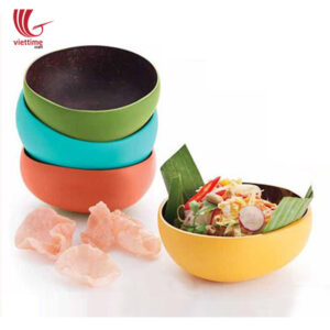 Colorful Lacquered Outside Coconut Bowls