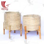 Seagrass Plant Basket