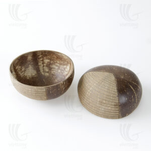 Coconut Shell Bowl sku BD055