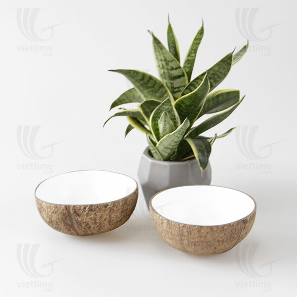 Coconut Shell Bowl sku BD057