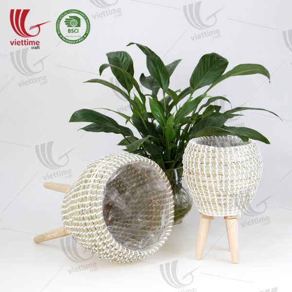 Seagrass Plant Stand