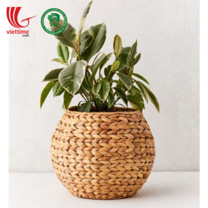 Water Hyacinth Plant Holder