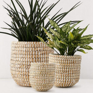 Seagrass Pot Plant Holder sku C00080